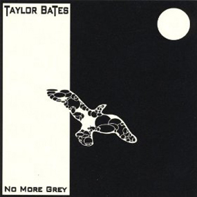No More Grey Taylor Bates